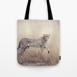 Cheetah on the savannah Tote Bag