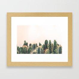 Desert Cactus 3 Framed Art Print