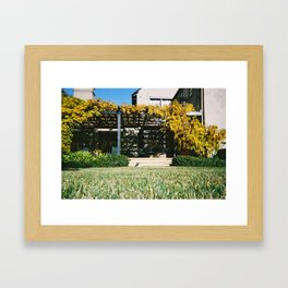 Sunbathing Pug Framed Art Print
