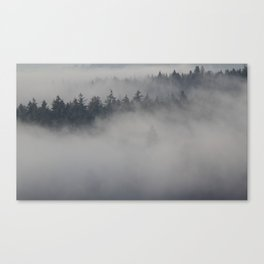 Fog Layers Canvas Print