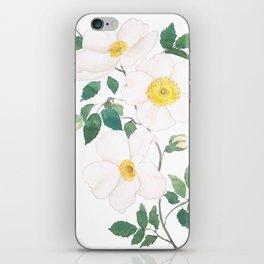 white wild Rosa rubiginosa watercolor iPhone Skin