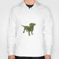 labrador Hoodies featuring Labrador Retriever by Carma Zoe