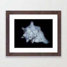 Dark Shell Framed Art Print