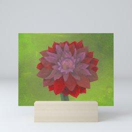 Dahlia Stained Rose Tyrien Mini Art Print