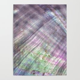 Mother of pearl in a sea shell Poster