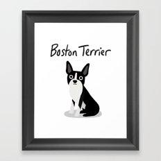 Boston Terrier - Cute Dog Series Framed Art Print