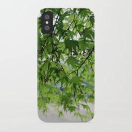 secret garden 24 iPhone Case