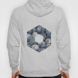 Beach Treasures Snail Shell Collection Hoody