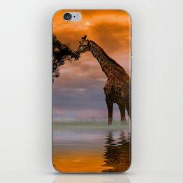 Giraffe at Sunset iPhone Skin