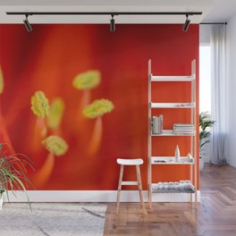 Vibrant red amarillys  Wall Mural