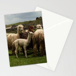 Llamita del Norte Stationery Cards