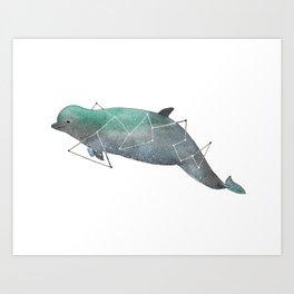 Bottlenose whale Art Print