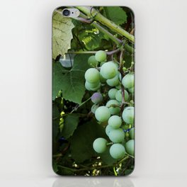 sour iPhone Skin