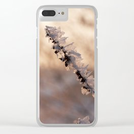 cold day in january Clear iPhone Case