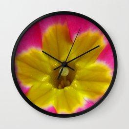 Pink and Yellow Primrose Macro Wall Clock