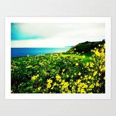 Island Spring Art Print