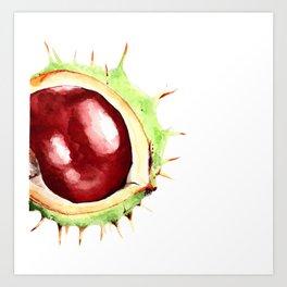 Fall Harvest. Chestnut. Watercolor painting. Art Print
