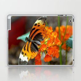 Numata Longwing Butterfly Laptop & iPad Skin