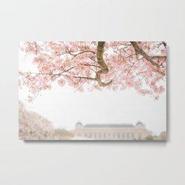 Spring Blooms in Paris Metal Print