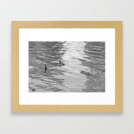 Ducks on LadyBird Lake in BNW Framed Art Print