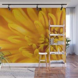 Detail of a yellow chrysanthemum flower Wall Mural