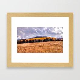 Aspens North of Flagstaff Arizona - Humphreys Peak Framed Art Print