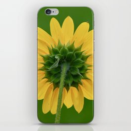 Back of the Sunflower iPhone Skin