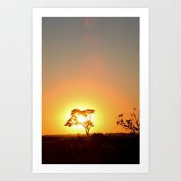 Sunset on the African Savanna Art Print