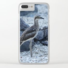 Curlew bird on the beach at Daydream Island Whitsundays Clear iPhone Case