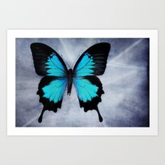 Vibrant Butterfly Art Print