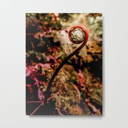A Fine Fiddlehead Metal Print