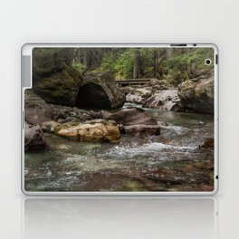 A Forest Fit for Fairies - Glacier NP Laptop & iPad Skin