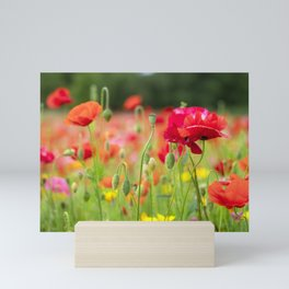 Poppy Garden Mini Art Print