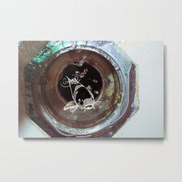 Flushed Metal Print