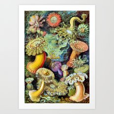 Ocean Life Too Art Print