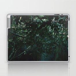 Lair  Laptop & iPad Skin