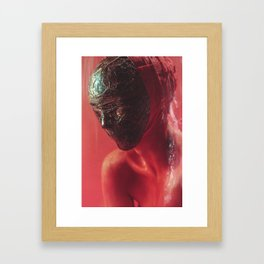 Colors of Red-02 Framed Art Print