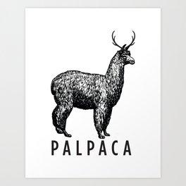the palpaca Art Print