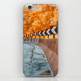 Highway Curve iPhone Skin