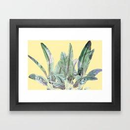 Bananas Leaves in Yellow Framed Art Print