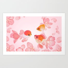 Cherry blossom goldfish Art Print