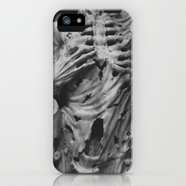 Sculpture iPhone Case