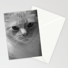 Julius - Whiteout 3 Stationery Cards