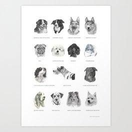 Dog poster Art Print