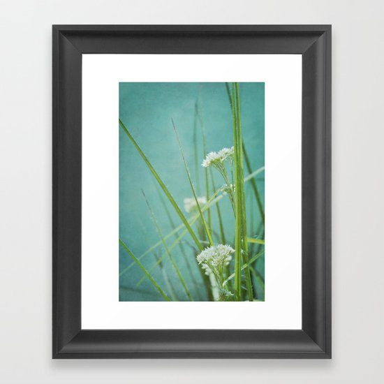 summer grasses Framed Art Print