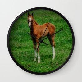 Equestrian Youth Wall Clock