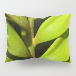 Vegetable balance - Green design Pillow Sham