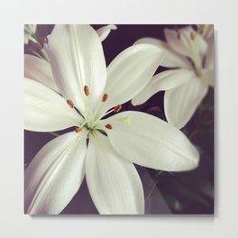 lilys Metal Print