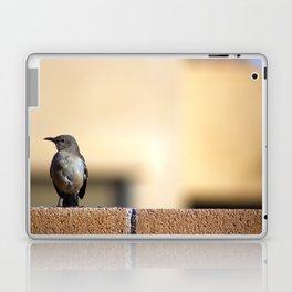 Golden-Eyed Mockingbird Laptop & iPad Skin