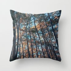 into the woods 09 Throw Pillow